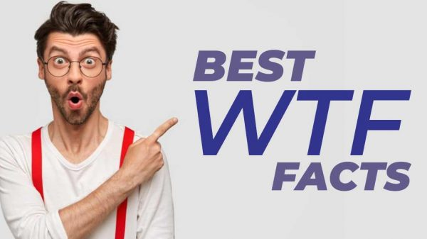 Best WTF Facts